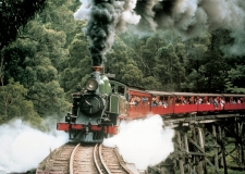 Puffing-Billy1-web2