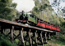 Puffing-Billy5-web